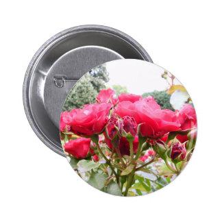 Rose of Love Pin