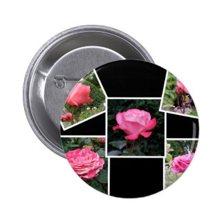 Rose of Love Collage Pinback Buttons