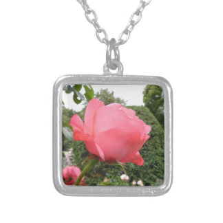 Rose of Love Necklaces