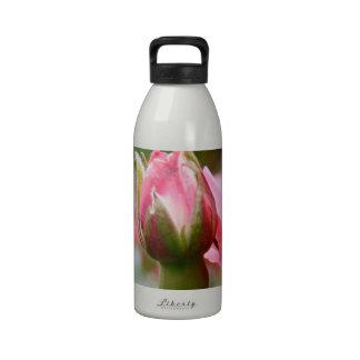 Rose of Love Water Bottles