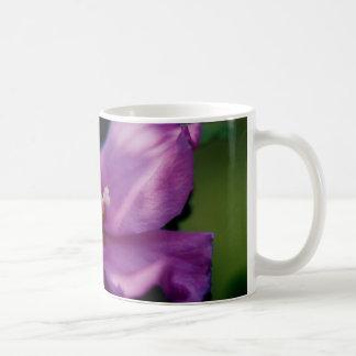 Rose of Sharon_1c Classic White Coffee Mug