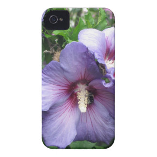 Rose of Sharon Bee Pollen Case-Mate iPhone 4 Case