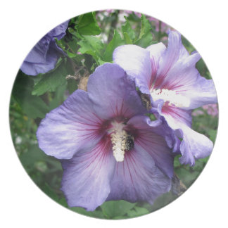 Rose of Sharon Bee Pollen Dinner Plate