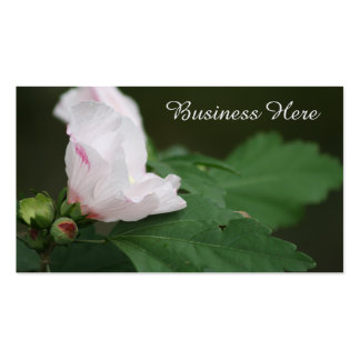 Rose of Sharon Floral Bloom Chic Business Card