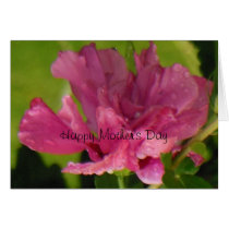 Rose of Sharon Happy Mother's Day
