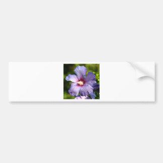 Rose of Sharon Hibiscus Blue purple Bumper Sticker