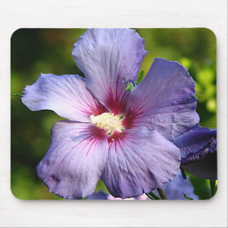 Rose of Sharon Hibiscus Blue purple Mouse Pad