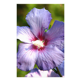 Rose of Sharon Hibiscus Blue purple Personalized Stationery