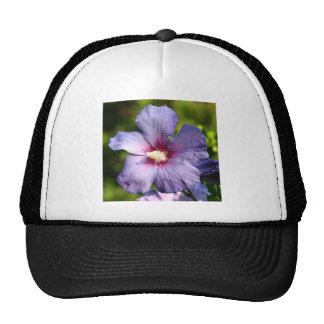 Rose of Sharon Hibiscus Blue purple Trucker Hat