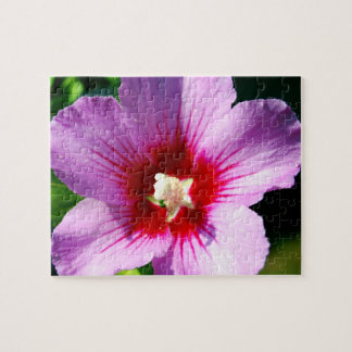 Rose of Sharon puzzle