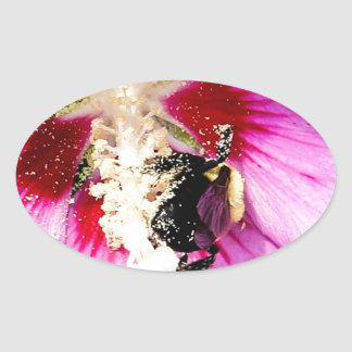 Rose of Sharon Stalker Oval Sticker
