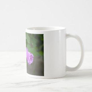 Rose of Sharon Twins Mug