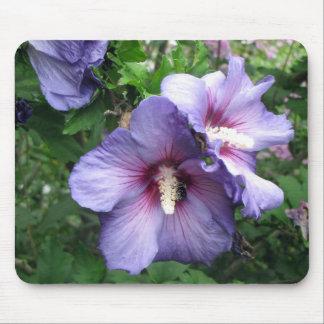 Rose of Sharron Hibiscus purple blue Mouse Pad