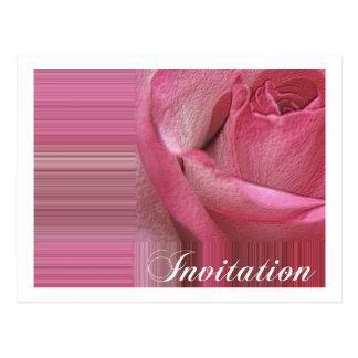 rose offset invitation postcard