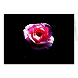 Rose on Black Card