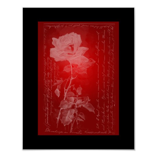 Rose on Red Poster