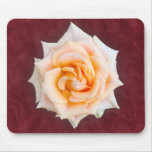 Rose on Red Wine Mouse Pad