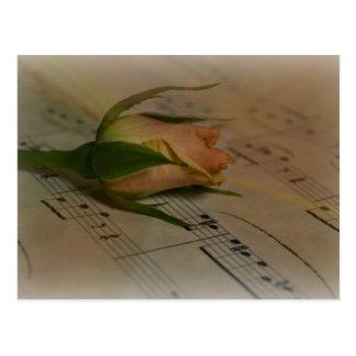 Rose on sheet music post card