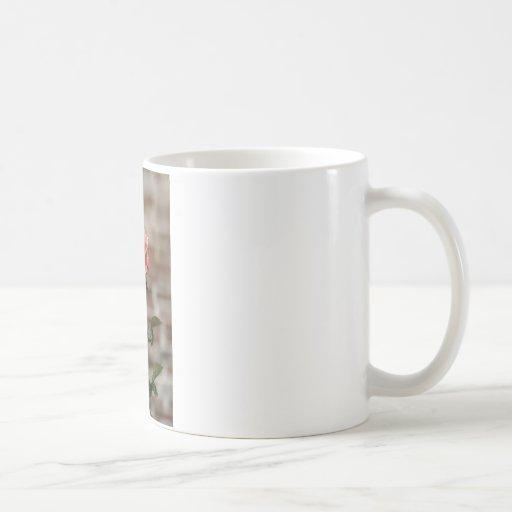 Rose on Stem Mugs