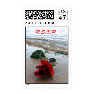 Rose on the Beach - STAMP