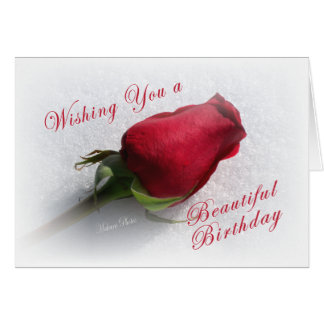 Rose on the Snow - personalize  the message Card