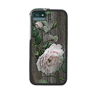 Rose on Weathered Wood iPhone 5 Cases