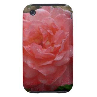 Rose Parade, Floribunda Rose iPhone 3 Tough Covers
