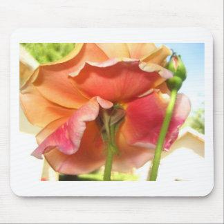 rose,pastel mouse pad