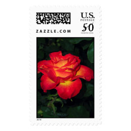 Rose Perfect Moment Postage