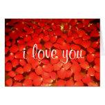 rose petal love cards