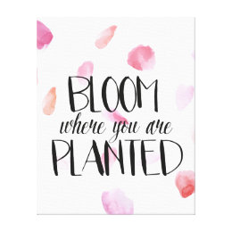 Rose Petals Bloom Canvas Print