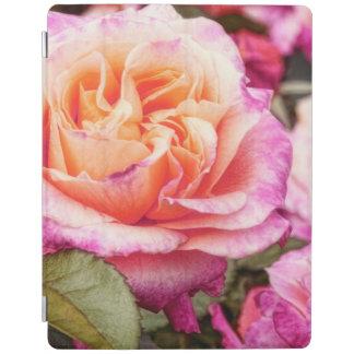 Rose Petals Photography iPad Smart Cover