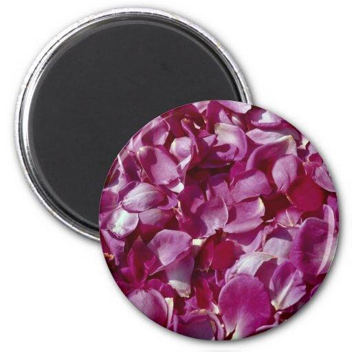 Rose petals refrigerator magnets