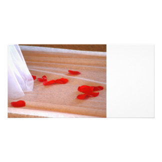 Rose Petals Wedding Dress Train tan background Picture Card