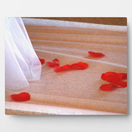 Rose Petals Wedding Dress Train tan background Photo Plaques