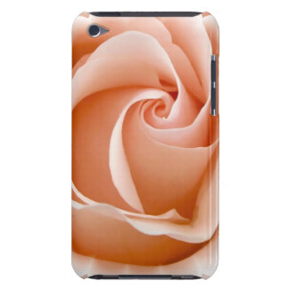 Rose Photo iTouch Case iPod Touch Cover