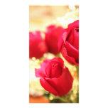 rose_photocard tarjetas personales