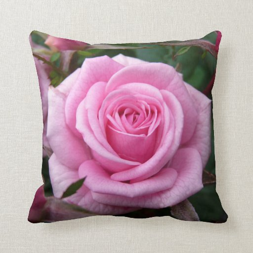 Rose Pillow Personalized Pink Rose Pillow Decor Zazzle