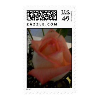 rose postage by gbillips