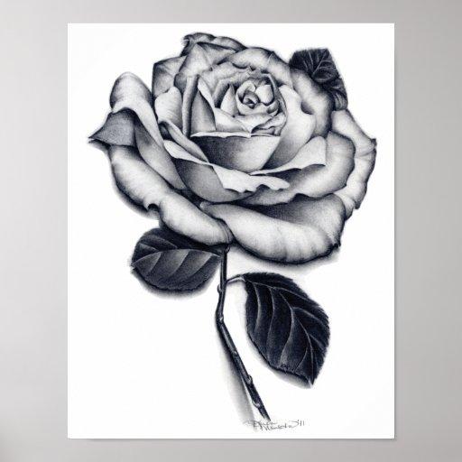 Rose Poster Art