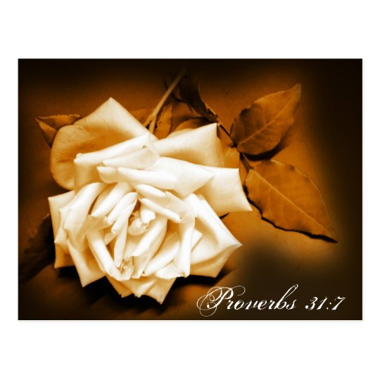 rose, Proverbs 31:7 Postcard