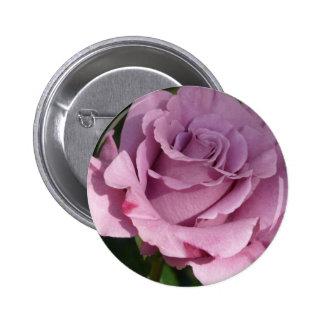 rose,purple button
