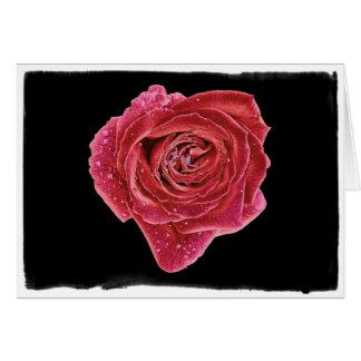Rose Raindrops Valentine with border Card