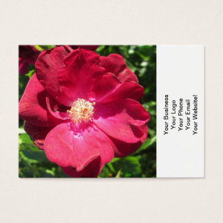 Rose Red Open Business Card