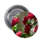 rose,red rose pins