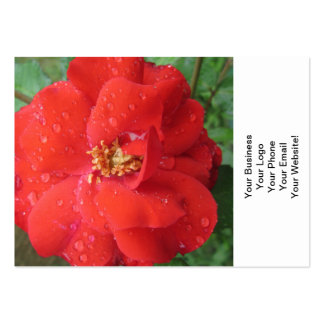 Rose Red Water Bloom Large Business Card