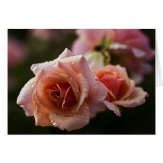 Rose RIver Greeting Card