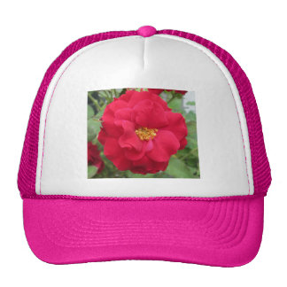 Rose Rote Blume Mesh Hats