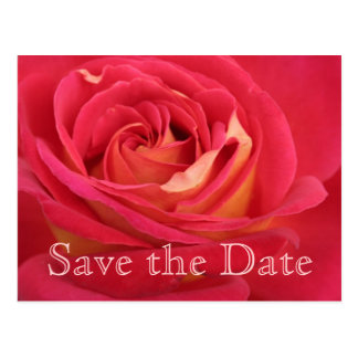 Rose Save the date 70th Birthday Celebration - Postcard