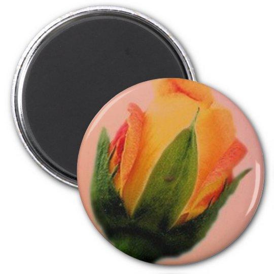 rose small zazzle magnet